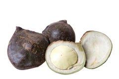 豆异乎寻常的查出的苏门答腊 免版税库存照片