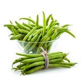 豆新绿色 免版税库存照片