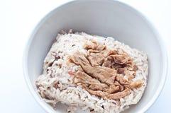 豆棕色凝乳米 库存图片