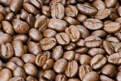 豆棕色咖啡纹理 库存照片