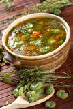 豆汤蔬菜 免版税库存图片