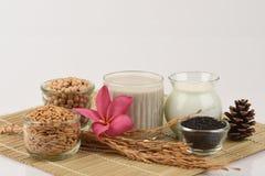 豆浆、大豆、黑芝麻籽和发芽的糙米(GABA) 免版税库存图片