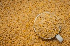 豆浆 免版税库存照片