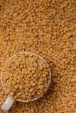 豆浆 免版税库存图片