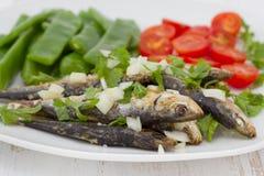 豆煮沸了油煎的绿色沙丁鱼 库存照片