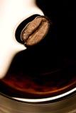 豆特写镜头coffe 库存图片