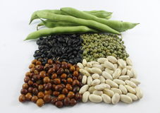豆用不同的颜色 免版税库存图片