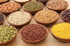 豆的各种各样的类型。 免版税库存照片