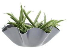 豆碗法国金属现代字符串 库存图片