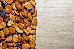 豆种子在一种轻的亚麻制织品被计划 背景 画的文本的地方 库存照片