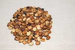 豆种子在一种轻的亚麻制织品被计划 背景 画的文本的地方 图库摄影