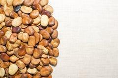 豆种子在一种轻的亚麻制织品被计划 背景 画的文本的地方 库存图片