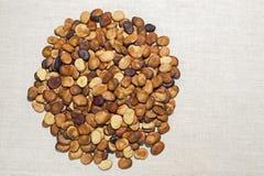 豆种子在一种轻的亚麻制织品被计划 背景 画的文本的地方 免版税库存照片
