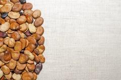 豆种子在一种轻的亚麻制织品被计划 背景 画的文本的地方 免版税库存图片