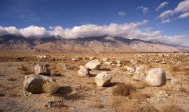 豆科灌木平的三角叶杨山死亡谷沙漠风景 库存图片