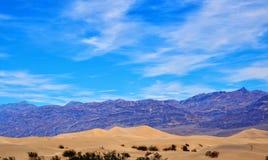 豆科灌木平的沙丘死亡谷 免版税库存图片