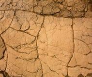 豆科灌木沙丘在死亡谷烘干了黏土细节 免版税库存照片