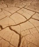 豆科灌木沙丘在死亡谷烘干了黏土细节 库存图片