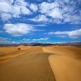 豆科灌木沙丘沙漠在死亡谷国家公园 图库摄影