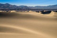 豆科灌木沙丘,死亡谷,加利福尼亚 免版税库存图片