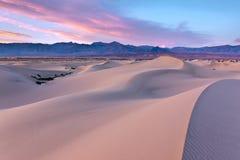 豆科灌木沙丘, Death Valley国家公园打印 图库摄影