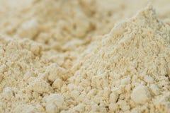 豆粉背景 库存图片