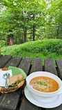 豆红萝卜花椰菜食物自然字符串蔬菜 免版税库存图片