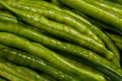 豆绿色 免版税库存照片
