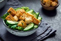 豆腐沙拉 免版税库存照片