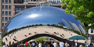 豆芝加哥 免版税库存照片