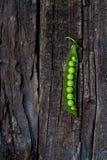 绿豆荚黑暗的木表面上的 库存图片