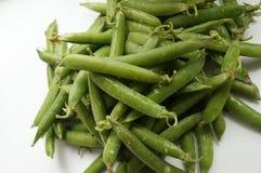 绿豆荚 免版税库存照片