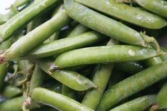 绿豆荚 图库摄影