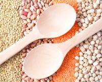 豆类的各种各样的类型 库存图片
