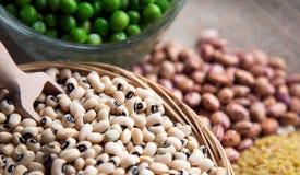 豆类Dlicious和健康自然混合食物 免版税库存图片