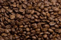 豆coffe 免版税图库摄影
