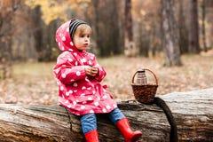 豌豆夹克的小女孩坐树和饮用的茶 免版税库存图片