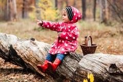 豌豆夹克的小女孩坐树和饮用的茶 库存图片