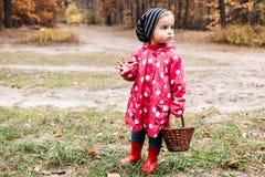 豌豆夹克的小女孩走在森林里和看fo的 库存照片