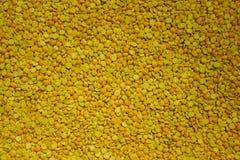 豌豆少量 免版税库存照片