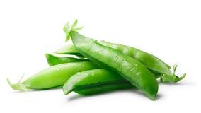 豌豆荚Pisum Sativum,道路 库存图片