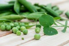 豌豆豌豆和荚在轻的背景的 库存照片