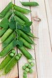 豌豆豌豆和荚在轻的背景的 免版税图库摄影