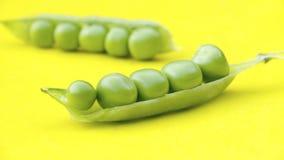豌豆 免版税库存图片