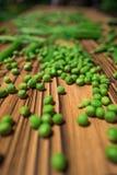 豌豆 库存图片