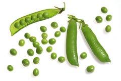 豌豆 免版税图库摄影