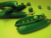 豌豆1 免版税图库摄影