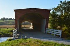 豚脊丘的被遮盖的桥2 图库摄影