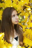 画象在秋天公园 库存照片