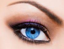 象女人美丽的眼睛 免版税库存图片